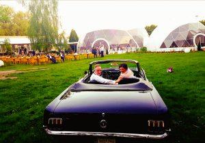 wesele w bzach