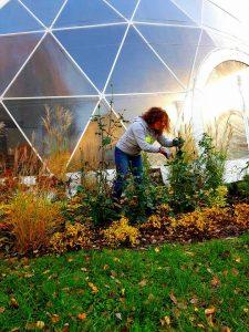 jesień namiot